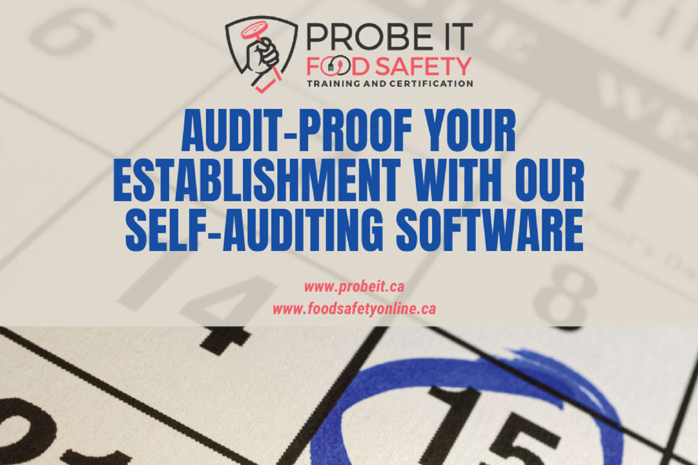 Audit-Proof-Your-Establishment-with-our-Sel-Auditing-Software